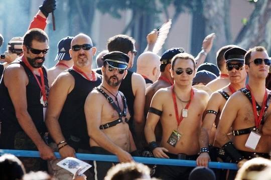 Москалькова: Следствие считает, что «убитые чеченские геи» вступили вИГИЛ